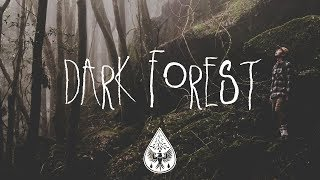 Dark Forest 🦇 - An Indie/Folk/Alternative Playlist