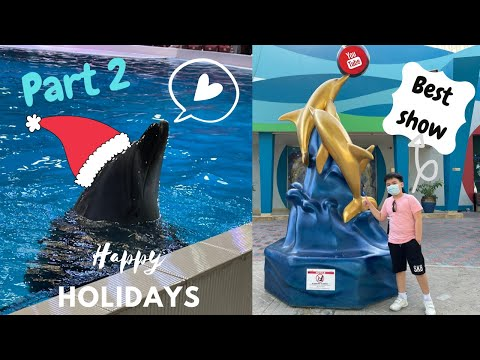Dubai Dolphinarium 2020| Full show | Part 2 | An Exciting show | Vlog 18 and 19