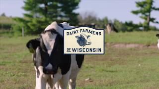 Short Film: Life On The Farm
