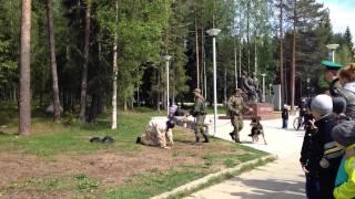 Видео от 64parallel.ru: Захват условного нарушителя границы в Костомукше