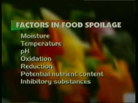 Food Spoilage and Its Prevention