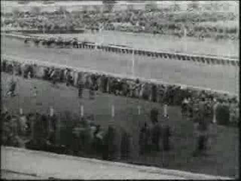 Phar lap melbourne cup 1930
