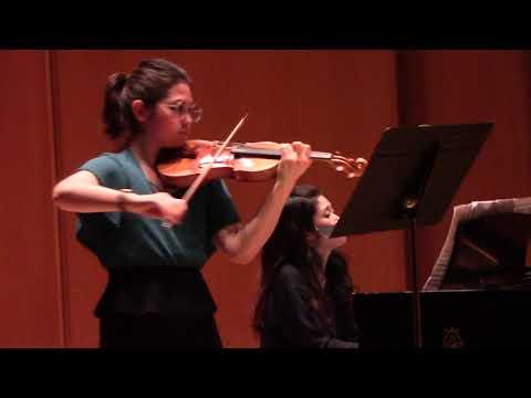 Schubert, Violin Sonata in G minor, Op.137 No.3 D'408