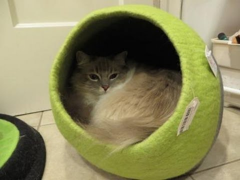 designer-cat-beds:-lollycadoodle-wool-cat-beds-from-the-cat-connection---ねこ---ラグドール---floppycats