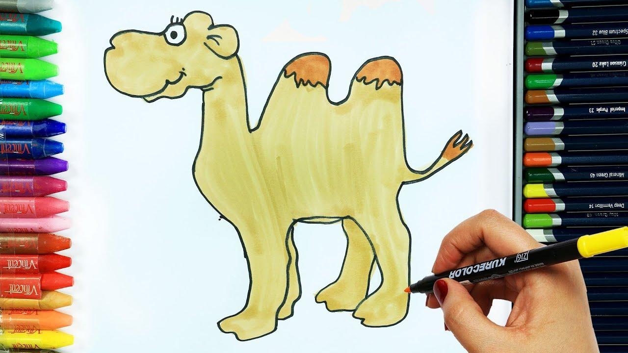 Deve Nasıl çizilir Boya Boya çizelim Boyayalım çocuklar