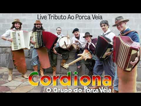 GRUPO CORDIONA -