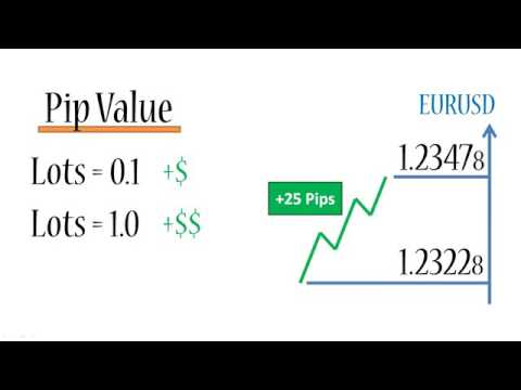 Forex risk and valuation