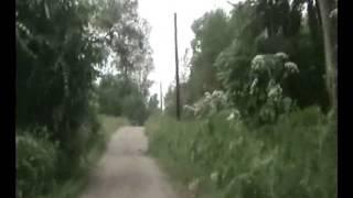 Деревня Николаевское, 2008год