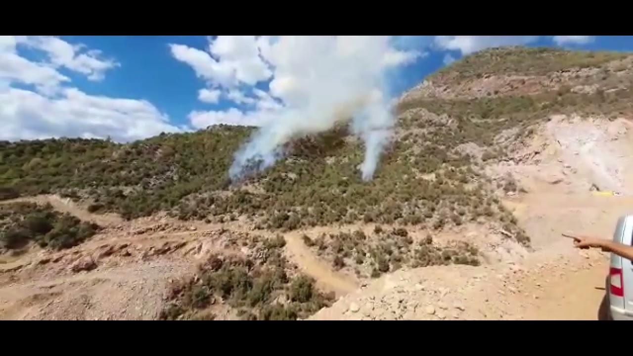 ormancık yangını