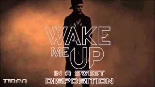 Avicii vs.The Temper Trap - Wake me up in a sweet disposition (Tiben Mash-Up)