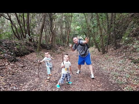 La Palma visitors guide