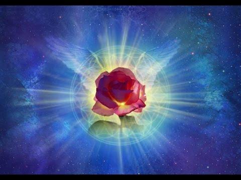 роза-мира