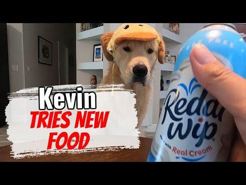 Kevin Tries New Food
