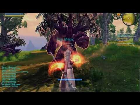 RaiderZ MMORPG [PL] HD #3 – FaelQuest gameplay – Podziemia i epicka boss żaba