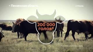 видео Пензенская область / Государственная программа переселения / Русский век