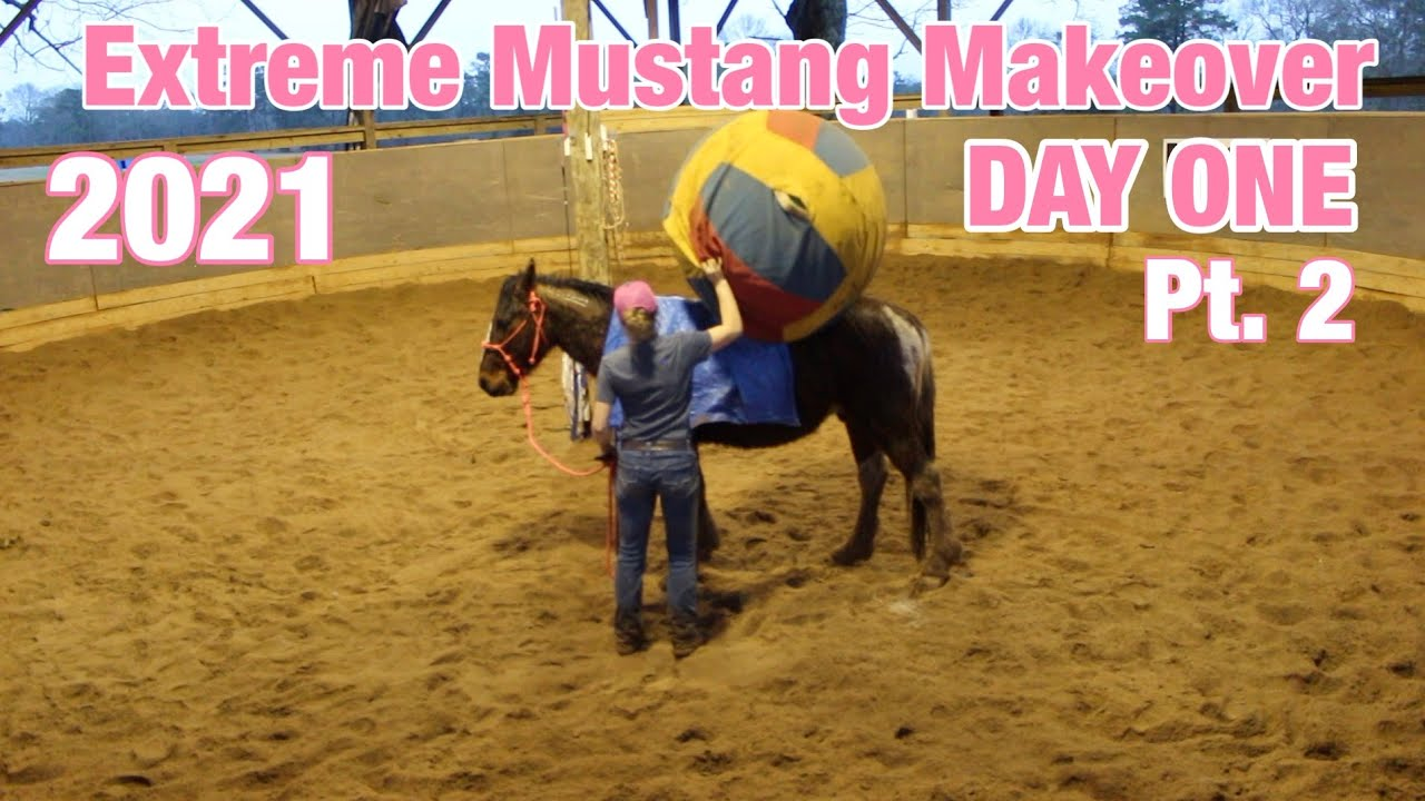 DAY ONE! Part Two | Extreme Mustang Makeover 2021
