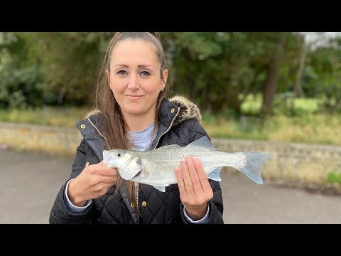 Bass Fishing On The Medway