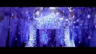 видео Зимняя свадьба – оформление