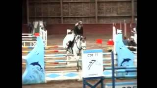 Meilleure chutes à cheval