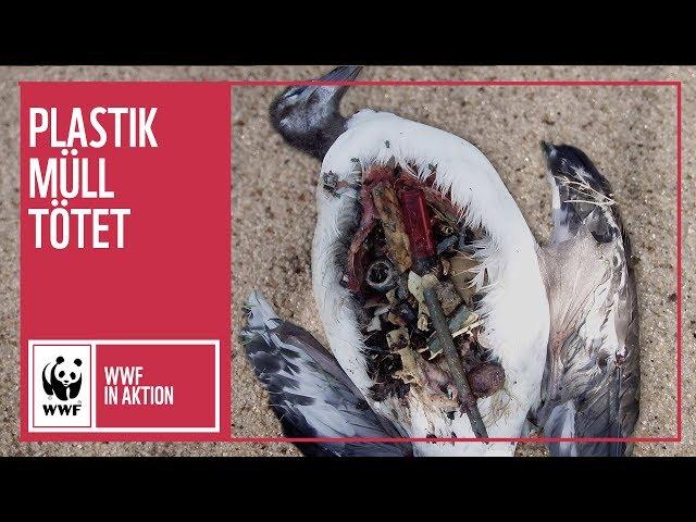 Ich bin dein Plastikmüll | WWF Deutschland