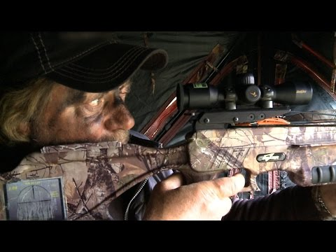 Excalibur Crossbow Bull Elk Hunting - Babe Winkelman's Outdoor Secrets