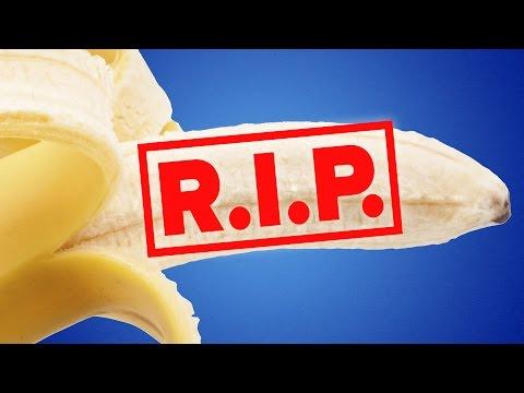 Are Bananas Going Extinct?