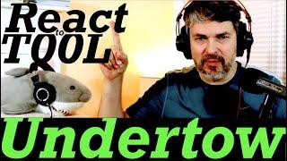 Tool Album React | Undertow (song)
