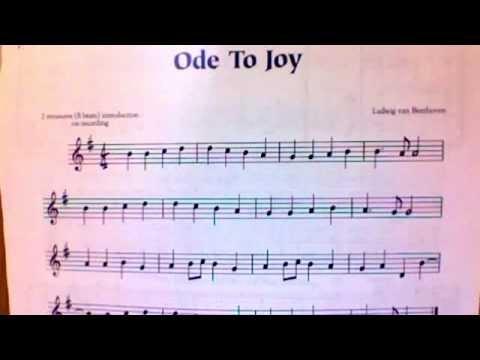Ode to Joy- Black Belt