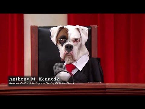 Amgen Inc. v. Connecticut Retirement Plans and Trust Funds: Oral Argument - November 05, 2012