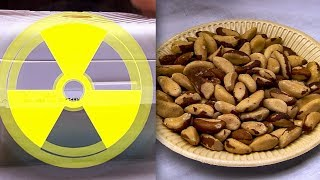 Are Brazil Nuts Radioactive? | Earth Lab
