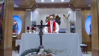 Publication Date: 2020-04-06 | Video Title: 20200405 陳鴻基神父聖類斯學校主日聖經頌禱分享