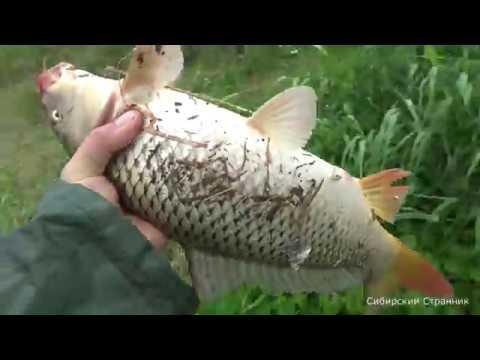 Рыбачим на подъёмник