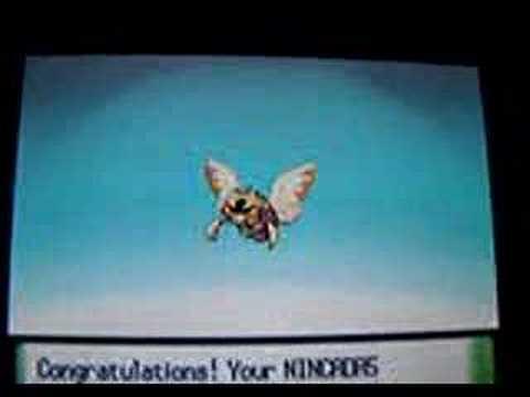 Shiny Pokemon Evolves (Nincada) - YouTube  Shiny Pokemon E...