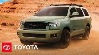 homepage tile video photo for 2022 Sequoia Overview | Toyota