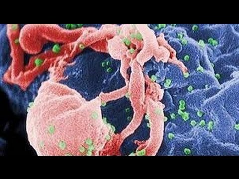 Documentary HIV/AIDS Channel - The First Man To Be Cured Of HIV