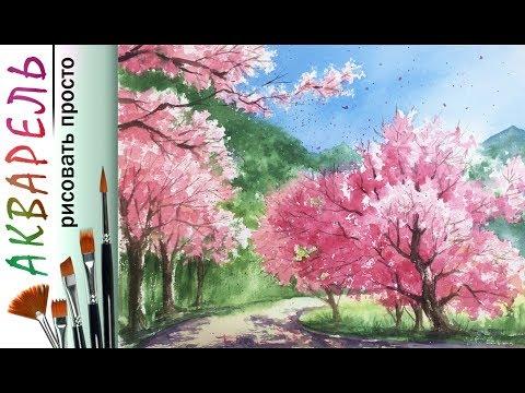 """""""Сакура. Весенний пейзаж"""" как нарисовать 🎨АКВАРЕЛЬ! Мастер-класс ДЕМО"""