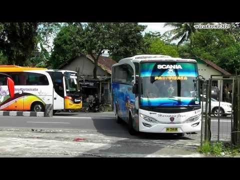 Yang Mana Jagoan Kalian | Scania In Java Island
