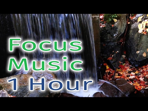 🎵 Focus Music for Studying | Piano Relaxing Meditation Sounds - Pay Attention & Concentrate Memory