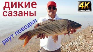 Клёвый двухдневный отдых на рыбалке на озере Тудакуль без съёмочной группы