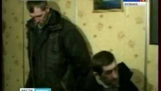 В Новокузнецке собака помогла найти Интернет