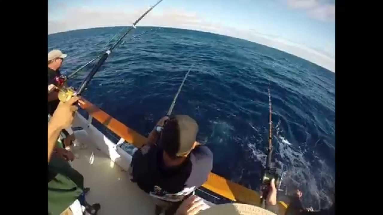 Tuna fishing ocean odyssey san diego h m landing mahi for San diego tuna fishing