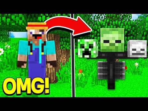 How to TURN into any MOB in Minecraft!