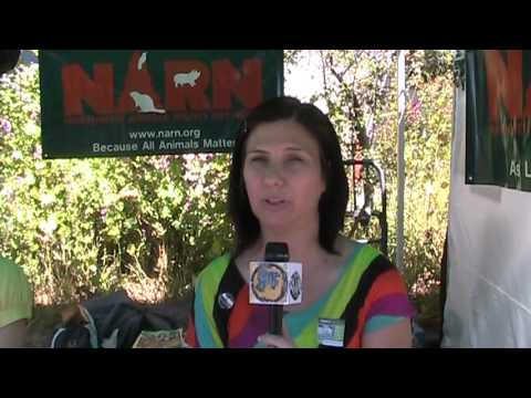 Fremont Fair: Interview with Vegan Susana Chez