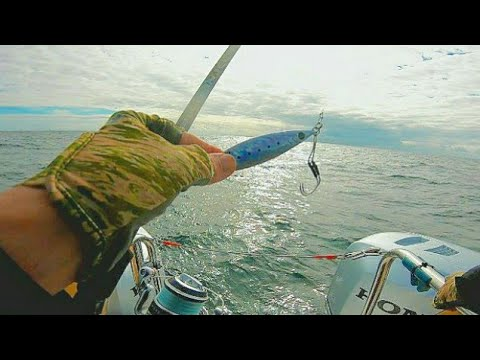 Slow Pitch Jigging / Wreck Fishing  South Devon / A Mixed Bag