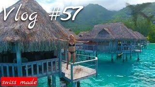 Wenn Träume wahr werden | Vlog #57  Moorea | Südsee