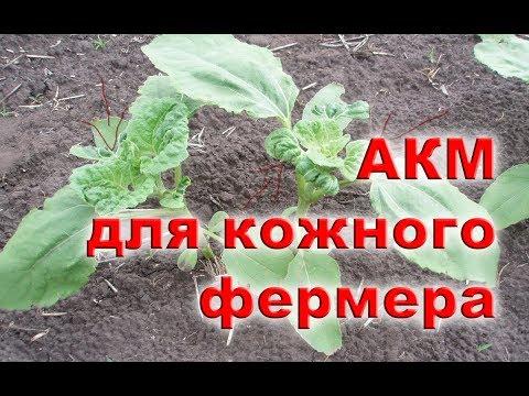 АКМ -Спасаем УРОЖАЙ от ГЕРБИЦИДА Евролайтинг, Харнес и др.
