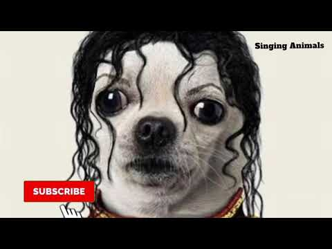 Thriller - Michael Jackson - Singing Dog