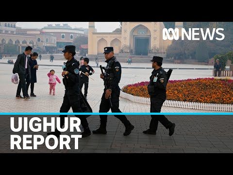 Disturbing evidence alleges China forcing Uighur women to be sterilised | ABC News