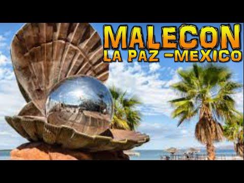 Beautiful Promenade And Beachfront -MALECON La Paz -Mexico (4K)
