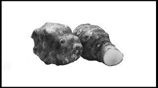 Топинамбур земляная груша - полезные свойства топинамбур